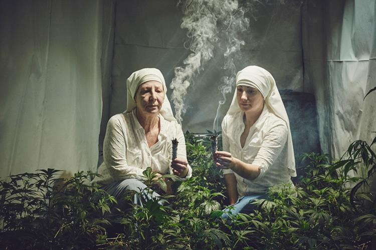 Nuns growing Weed