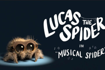 Lucas the Musical Spider